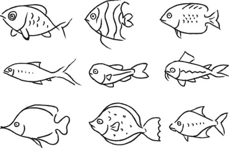 set vector-sketch of fish  Vector