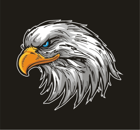 hawks: Mascot Head of an Eagle Illustration