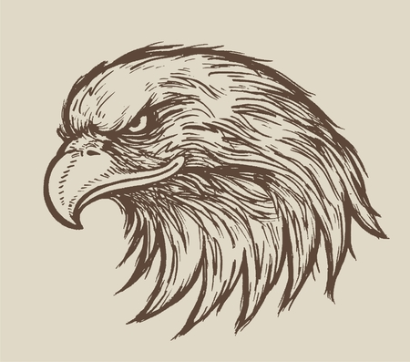 Eagle - sketch vector illustration isolated
