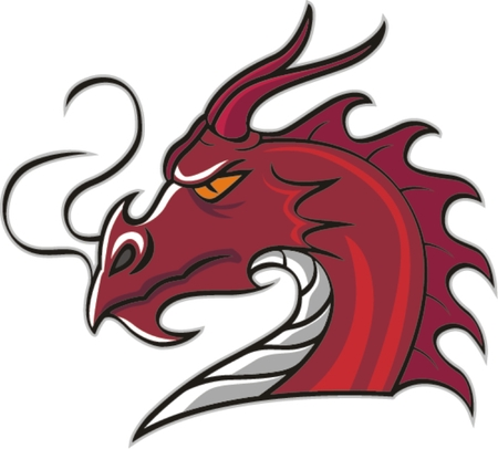 mascot: Head Dragon mascot, vector illustration