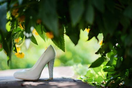 A pair of bride's shoes under the leaves of a bush close-up with selective focus. Wedding morning concept.                   免版税图像