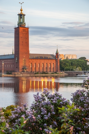 townhall: Stockholm Town Hall in early morning light