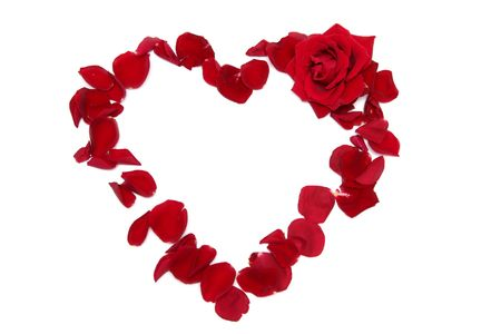 Heart made of red rose petals on a white background