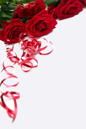 Beautiful red roses on a white background Stock Photo - 732602