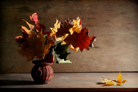 Colorful autumnal leaves on a dark brown background photo