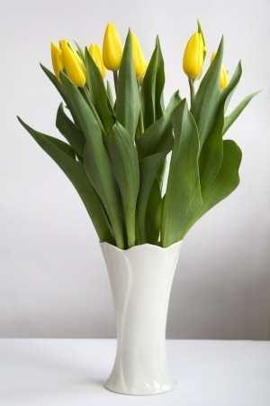 Bunch of yellow tulips in white vase Stock fotó