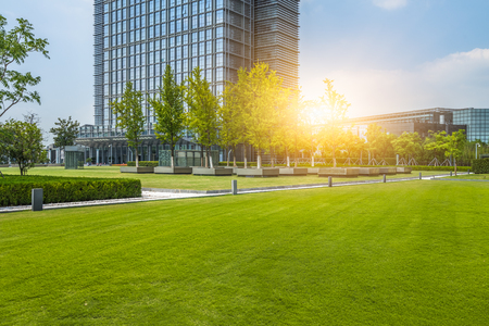 beautiful green field near modern office building Stock Photo