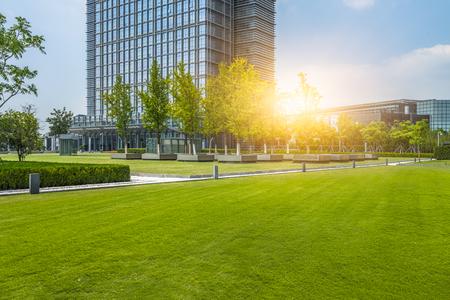 beautiful green field near modern office building Foto de archivo