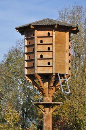 condominium nest, rotwail