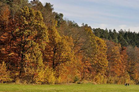 gorgeous fall landscape, sieben muelen tal