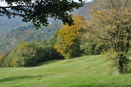 autumn meadows #1, cisa Stock Photo