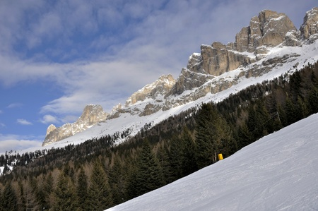 rosengarten woods and cliffs, dolomites Stock Photo