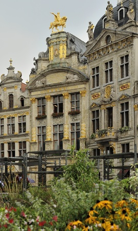 flowers in grand place, brussels