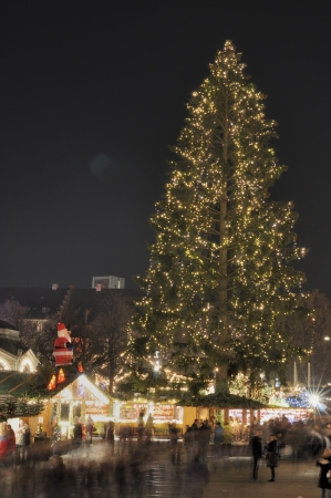 christmas tree at market, stuttgart Stock Photo - 11572983
