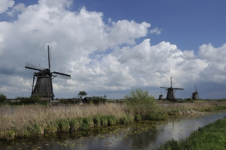 location shot: windmills at kinderdijk, netherlands            row of windmills at world famous touristic location, shot under a stormy bright spring sky