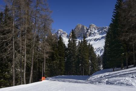 skipiste: Ski zwischen W�ldern unter Rotewand, Karerpass laufen; Piste in den Wald in den Dolomiten unter ber�hmten Bergkette, gedreht im hellen Licht unter tiefblauem Himmel