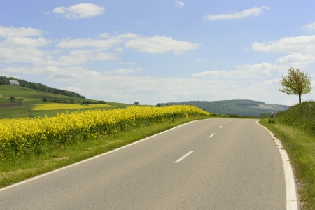at ease: hilly road in Baden country, Geisingen; road bends in ease uphill near fields of yellow rapeseed in hilly baden country, shot in summer under sky with light clouds Stock Photo