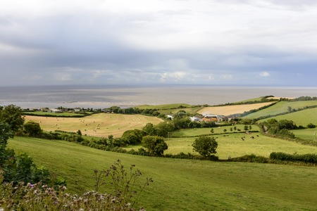 bristol channel: country and coast near st Audries bay, Somerset, landscape of the countryside of Somerset Bristol Channel with the sea in background Stock Photo