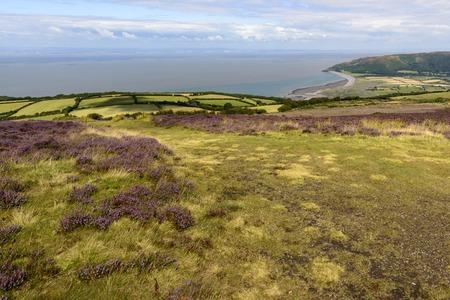 bristol channel: moor landscape and Bristol channel coastline, Exmoor , landscape with moor vegetation, in background the coastline of Bristol channel Stock Photo