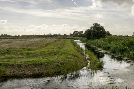 romney: fields and ditch at Romney Marsh, landscape of the marsh with a ditch between green fields,  Romney Marsh, Kent
