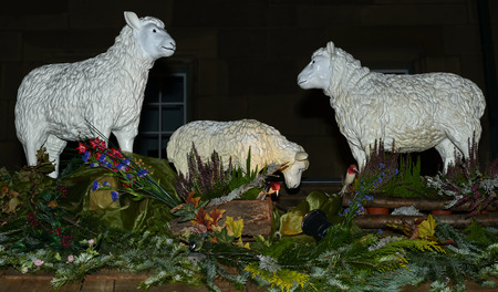 spruce branches and some fake sheep on stall roof of traditional Christmas market hold in city center, shot on dec 01 2014 , Stuttgart, Germany
