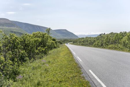 landscape with road and green countryside near Artic village on western side of island, shot under bright summer light near Stave, Andoya, Vesteralen, Norway