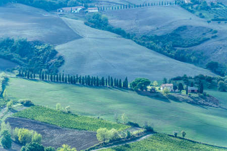 aerial landscape with cypress tree-lined road leading to rural building in hilly countryside around historical hilltop town, shot in bright light at Montepulciano, Siena, Tuscany, Italy