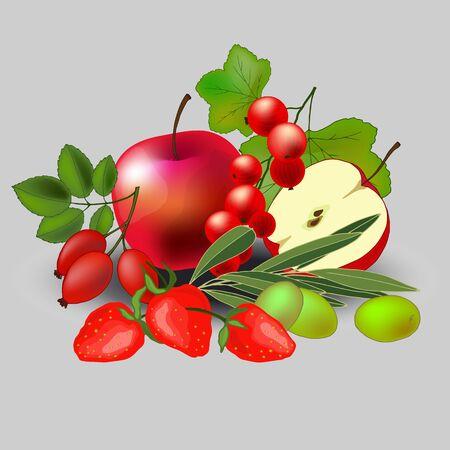 still life of various fruits