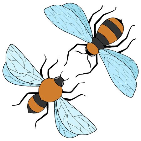 drawings of bees in color, vector illustration, isolate on a white background 向量圖像