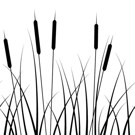 seamless pattern, with a pattern of grass silhouettes and reed, in monochrome colors, ornament for wallpaper and fabric, wrapping paper, background for different designs