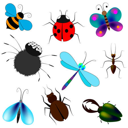 set of butterflies and bees in a cartoon style, vector illustration, isolate on a white background