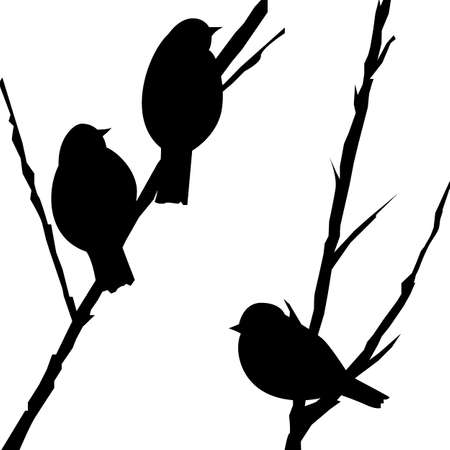 background with silhouettes of birds on the branches, vector illustration