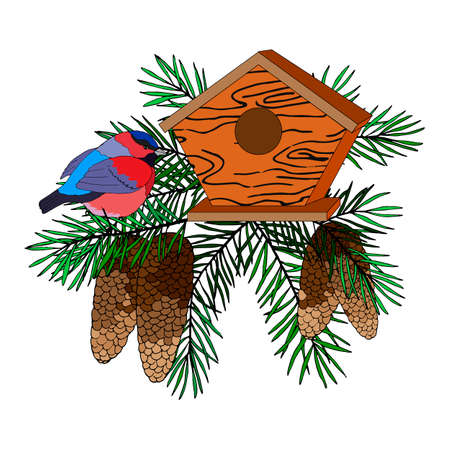 composition of branches of fir, cones, bird and birdhouse, vector illustration, isolate on a white background