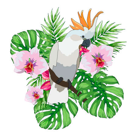 composition with tropical flowers, leaves monsters and parrot, vector illustration, isolate Ilustrace