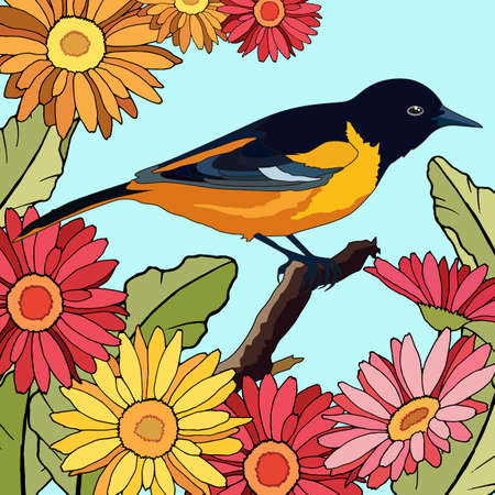 background with birds in gerbera flowers, for different design