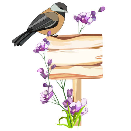 bird on a wooden plate, flowers, isolate, for different design