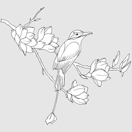 black and white linear drawing, bird on a branch with magnolia flowers