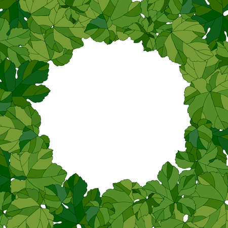 Frame with grape leaves, vector illustration, ornament for greetings and design, pattern in green