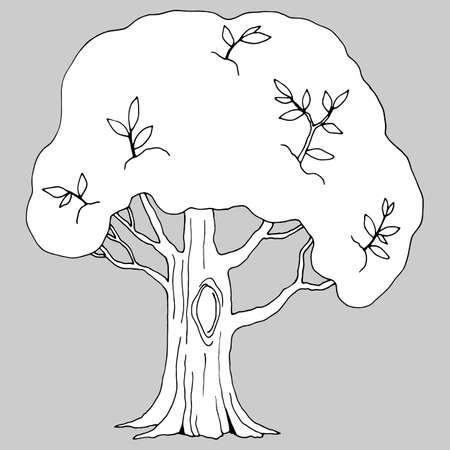vector illustration, linear drawing of a tree in black and white, isolate, elements for design
