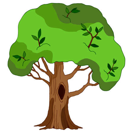 vector illustrations, linear tree drawing in green, isolate, design elements, cartoon style Иллюстрация