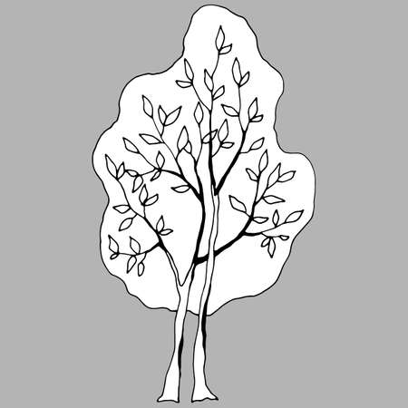 vector illustrations, linear drawing of tree in black and white, isolate, design elements, doodle style