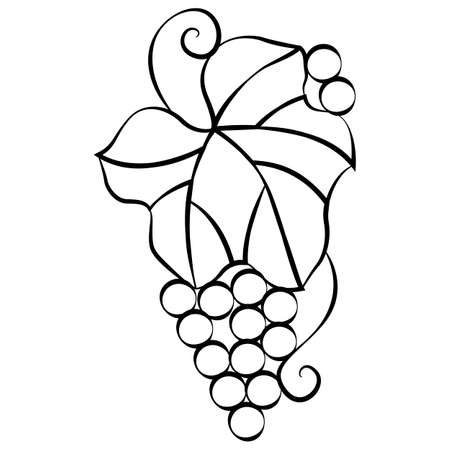 Grape leaf and berries in doodle style, simple vector illustration, design ornament, linear black pattern, isolate on a white background Иллюстрация
