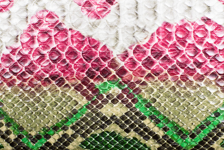 Snake skin background. Multicolored bright animal print red green beige colors Imagens