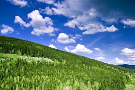 Mountain forest with cloudy sky Stock Photo