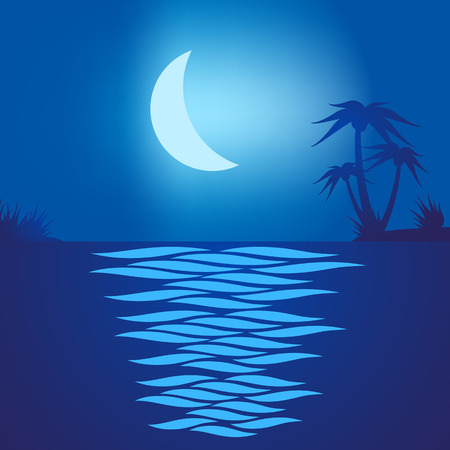 Tropical beach at night with a moon reflecting on the water Illustration