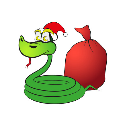 Snake in a hat with gifts.  Vector