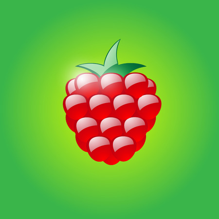 Glossy raspberry on green background Vector