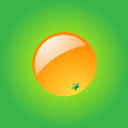 Orange on green background.   Vector