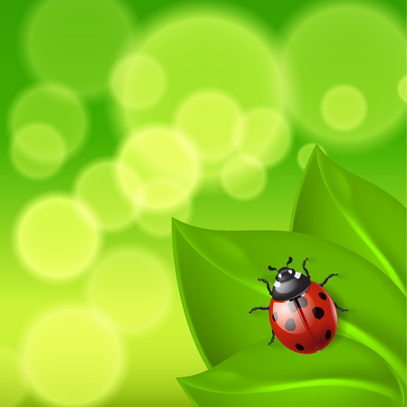 Green background with ladybird