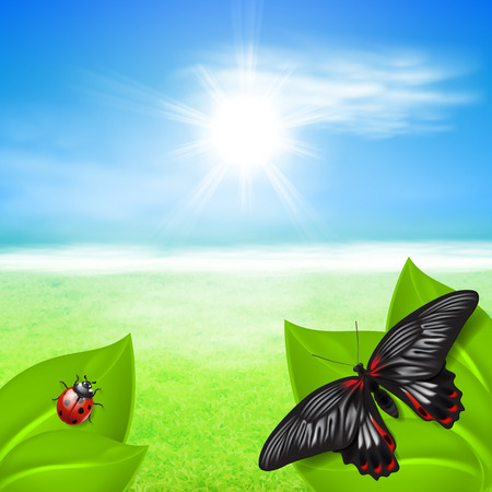 Sunny background with green grass and insects. EPS10 vector. Vector